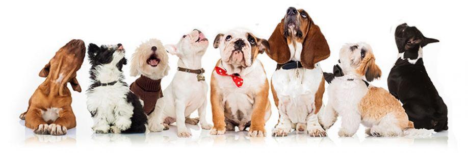 Adoro Cachorros Cover Image