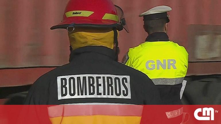 Seis meios aéreos e mais de 80 bombeiros combateram fogo em Mirandela - Atualidade - Correio da Manhã